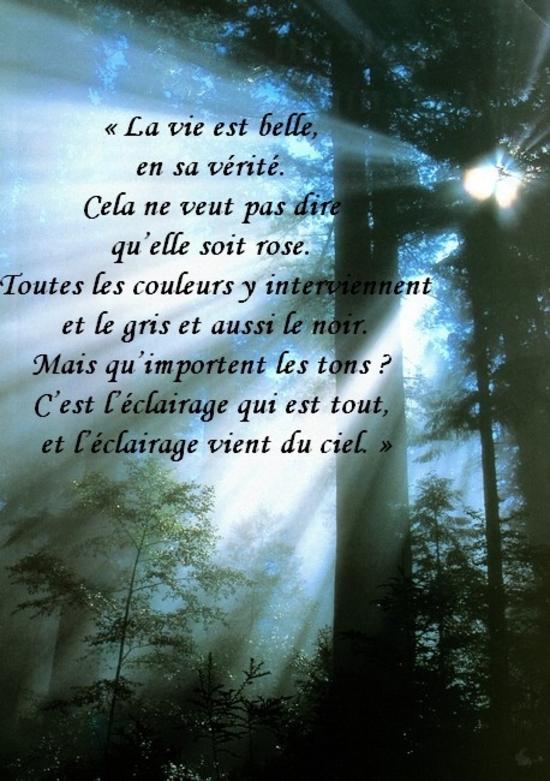 Citation La Vie Est Belle - Les Citations serapportantà Le Moi Philosophie