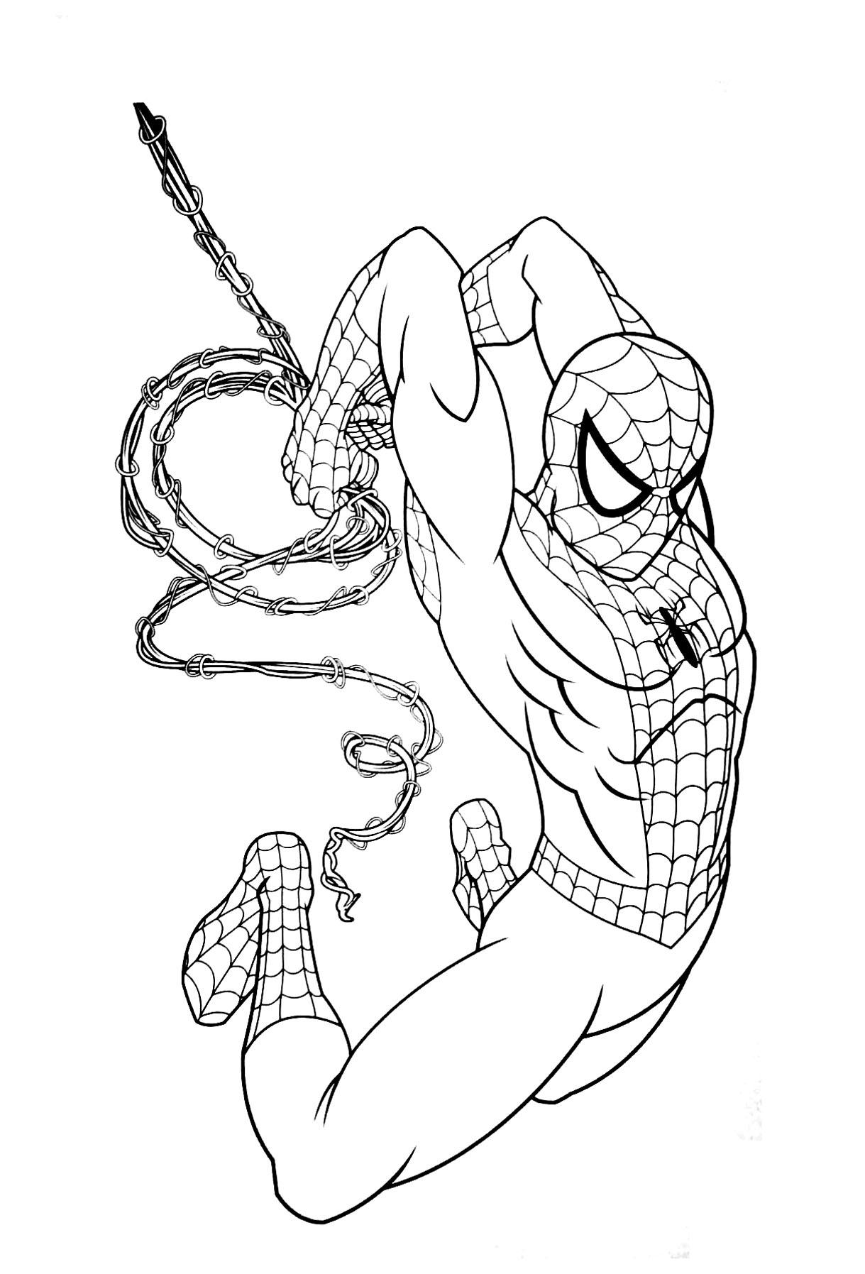 Coloriage De Spiderman Pour Enfants - Coloriage Spiderman intérieur Dessin Spiderman À Colorier Gratuit