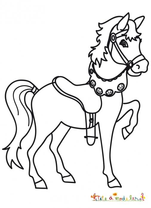 Coloriage D'Un Petit Poney Harnaché - Coloriage Tête À Modeler avec Dessin Petit Poney A Colorier