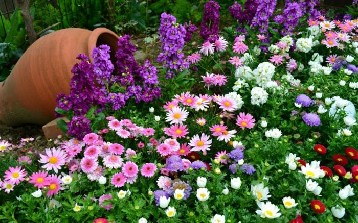 Comment Créer Un Joli Massif De Fleurs Pour Décorer Le concernant Fleurs De Jardin