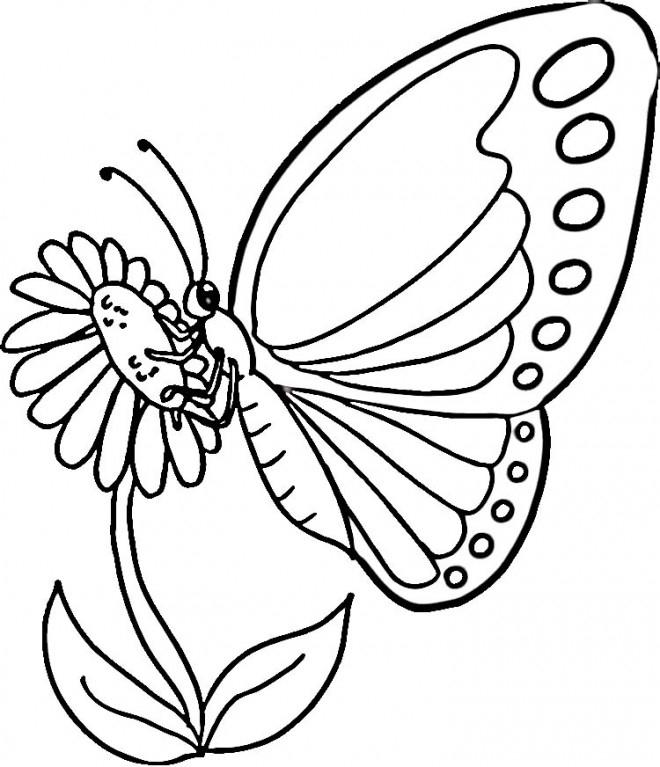 Dessin De Papillon Sur Une Fleur En Couleur - Choix De Couleur avec Coloriage De Papillon Sur Une Fleur