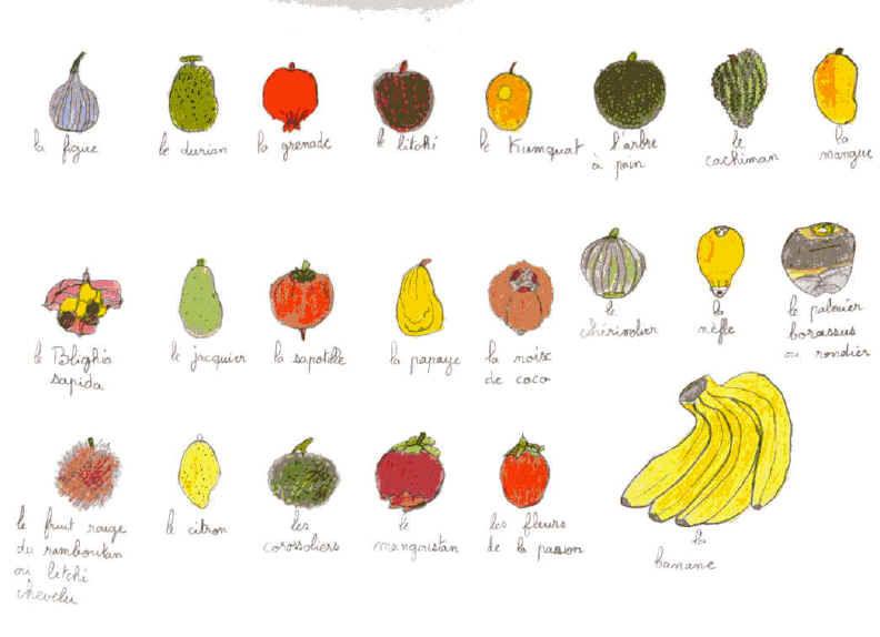 """Envolée - """"Les Petits Bonheurs De Miss T"""" serapportantà Liste De Tous Les Fruits"""