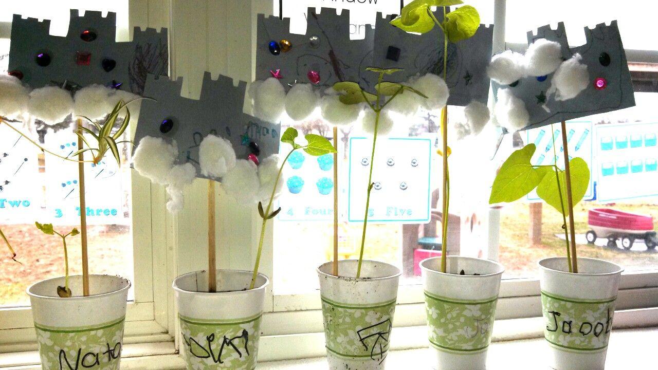 Épinglé Par Rachel Hinkle Smith Sur Rachel'S Preschool concernant Plantation Haricot Maternelle
