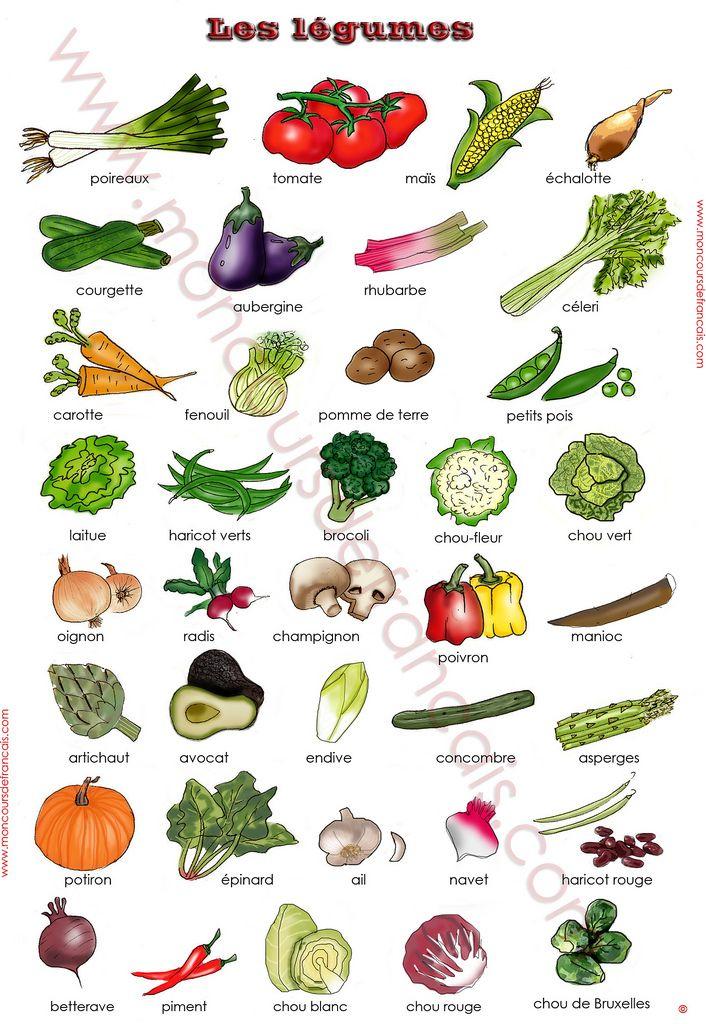 Evo Magz V4.7 avec Fruits Et Legumes En Francais
