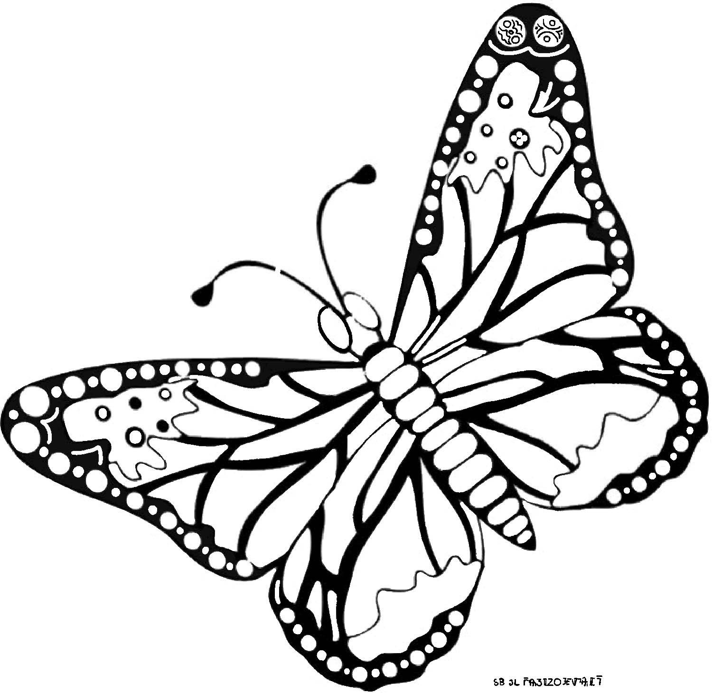 Frais Coloriage De Papillon A Imprimer | Des Milliers De destiné Dessin Papillon À Colorier