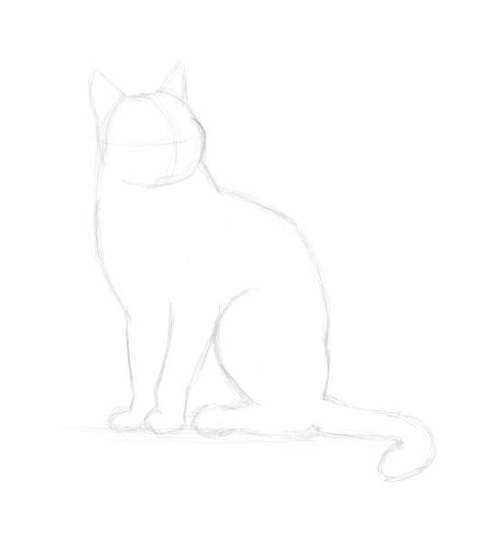 Idées Pour Comment Dessiner Un Chat Tres Facilement avec Comment Bien Dessiner Un Chat