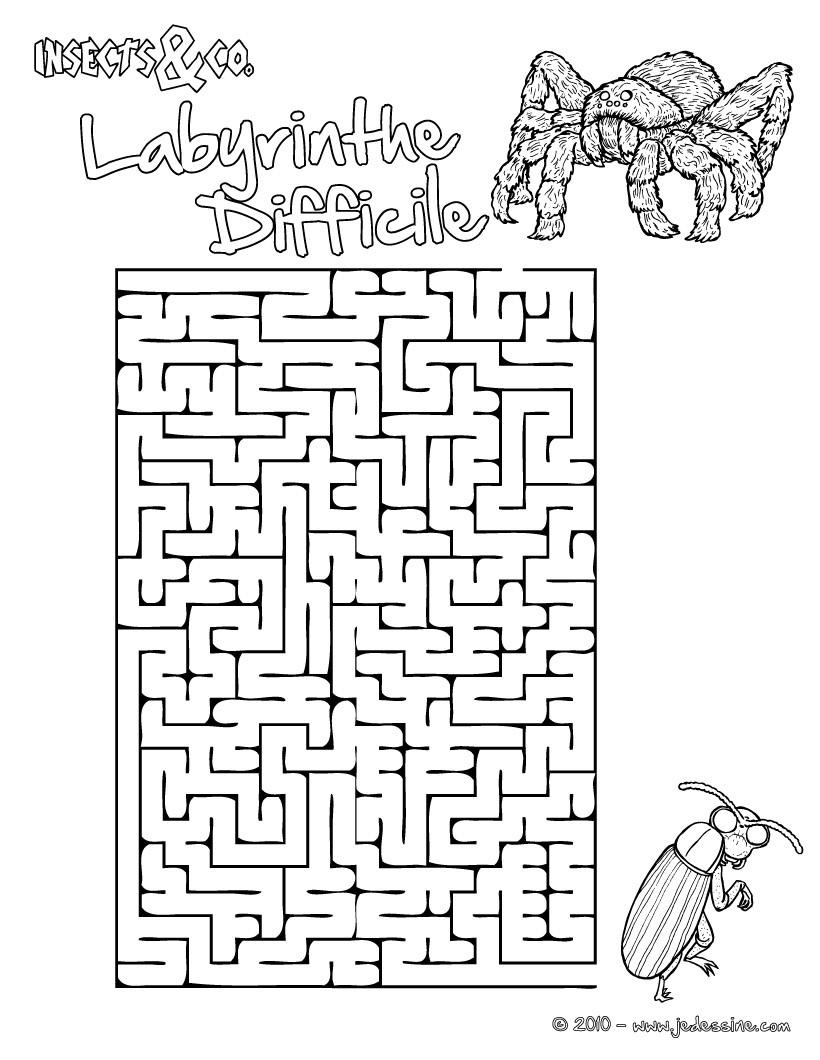 Jeux De Labyrinthe Difficile Insects&Co - Fr.hellokids intérieur Labyrinthe Difficile