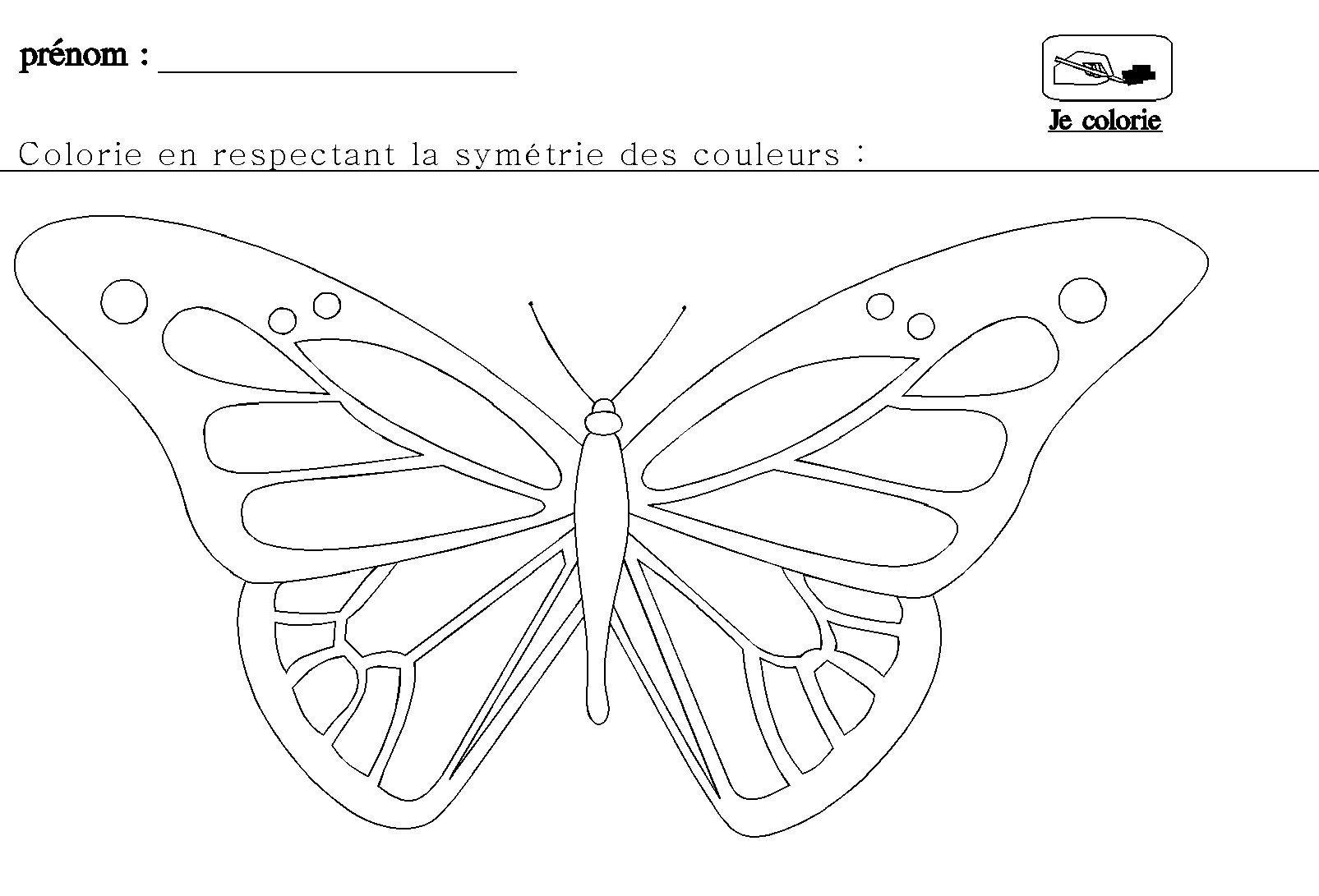 La Symétrie En Maternelle Pour Grande Section | Symétrie encequiconcerne Dessin Symétrique A Imprimer