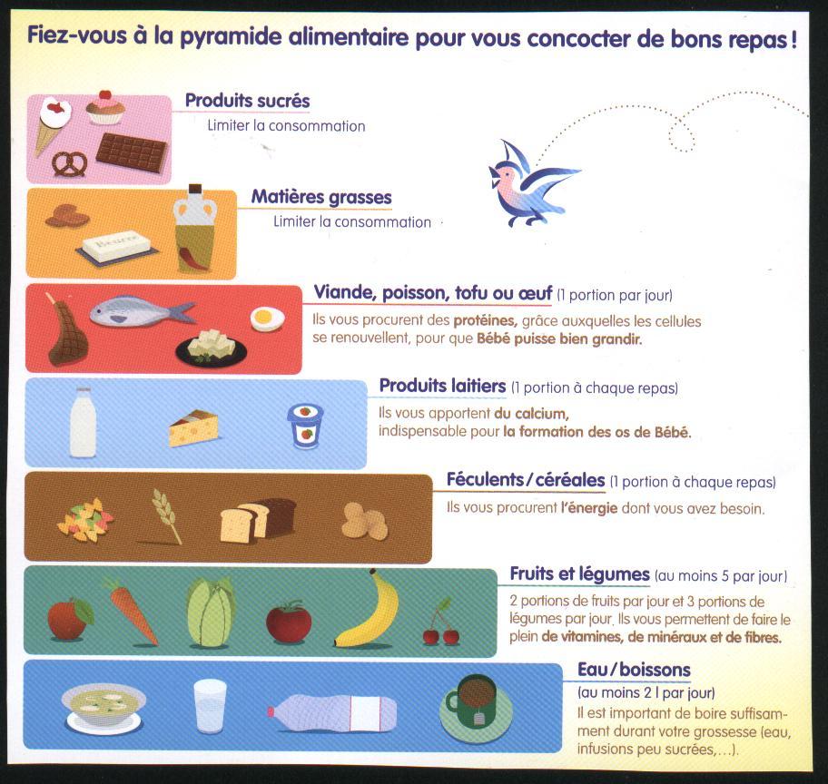 L'Alimentation | Ce2 | Fiche De Préparation (Séquence intérieur Les 7 Familles D Aliments