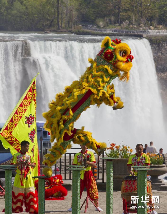 Led-Supplier: Chinoise Danse Du Lion pour Spectacle Danse Chinoise