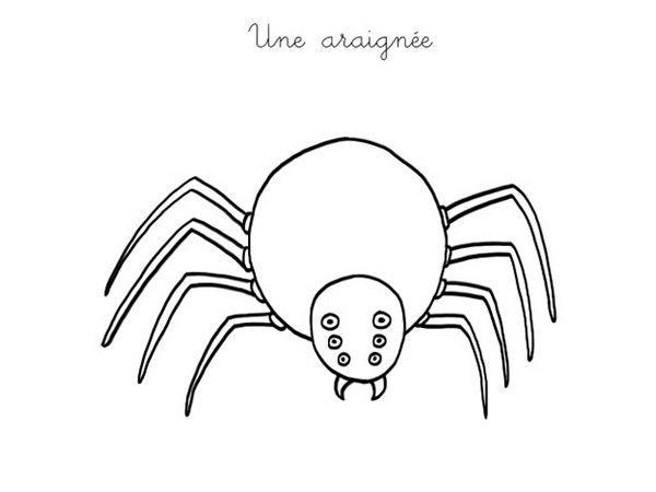 Les 25 Meilleures Idées De La Catégorie Araignée Halloween encequiconcerne Jeux De Arenier