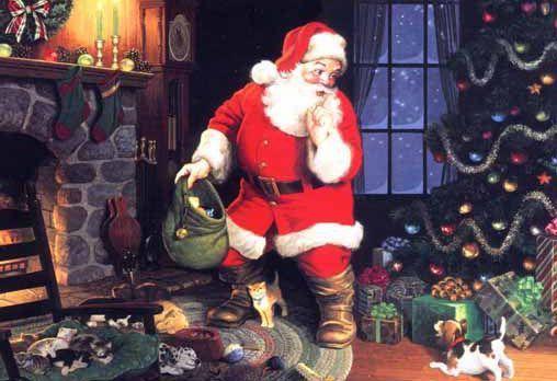 Noel concernant N De Noel