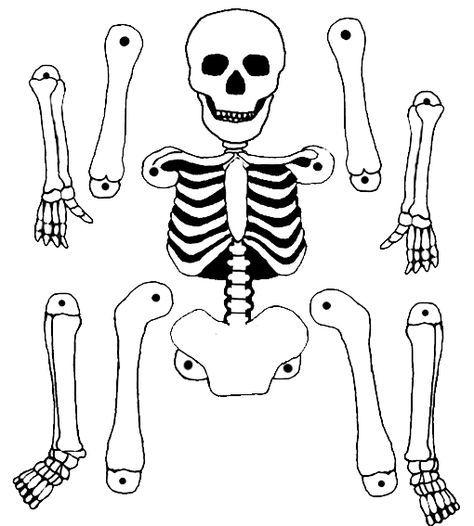 Pantin Squelette | Squelette Halloween, Halloween Et tout Pantin Articulé Patron