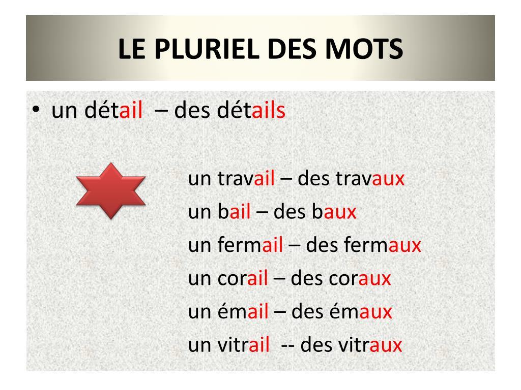 Ppt - Le Pluriel Des Mots Powerpoint Presentation, Free intérieur Pluriel Chacal