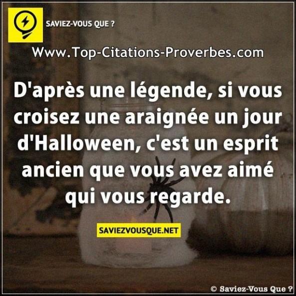 Proverbe Drole Halloween - Les Plus Beaux Proverbes à Phrase D Halloween