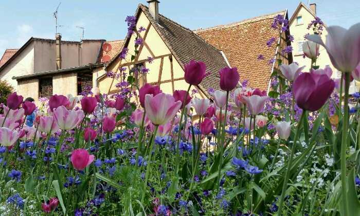 Puzzle Gratuit Maison Et Fleurs (4412) Par Absolu-Puzzle dedans Puzzle Nature Gratuit