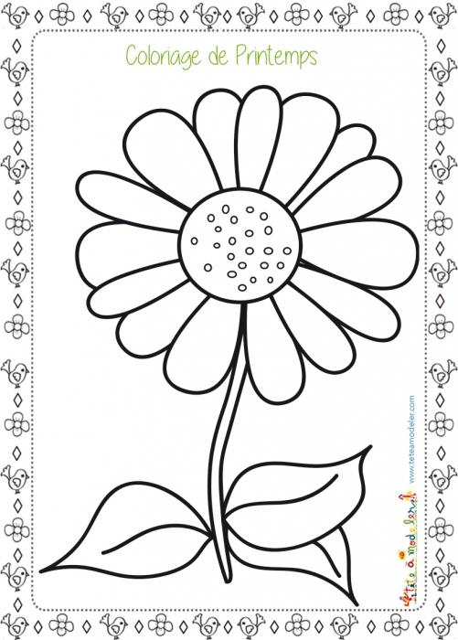 Scenery & Spring Pictures: Tete A Modeler Fleurs De Printemps destiné Coloriage Fleurs Printemps