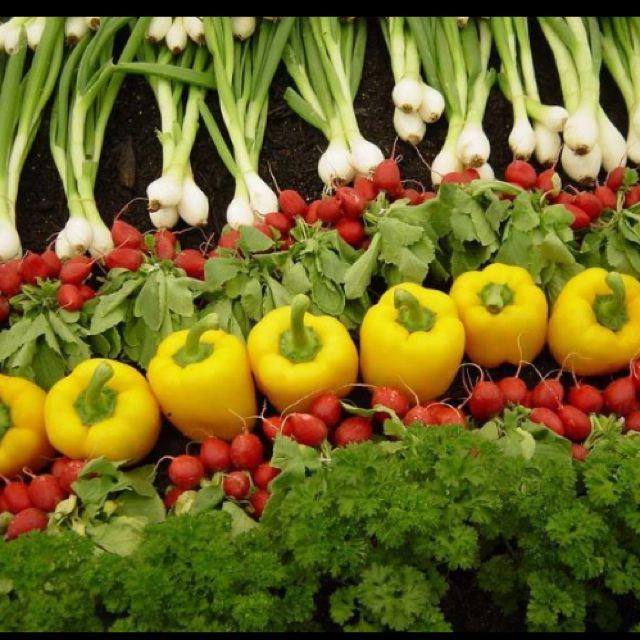 Tout Le Monde En Rang | Fruits Et Légumes, Fruits, Jardins dedans Tout Les Legume