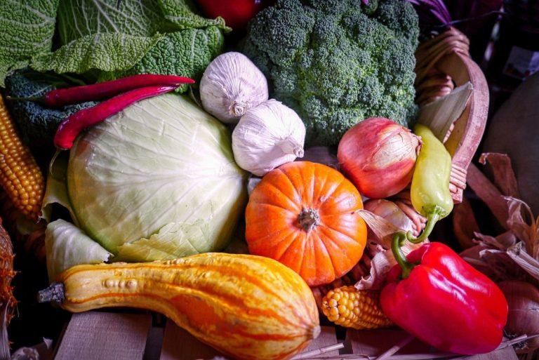Tout Savoir Sur Les Légumes De Saison Et Leurs Bienfaits encequiconcerne Tout Les Legume
