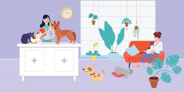 Vétérinaire Examinant Chien Et Chat En Cabinet Vétérinaire pour Jeux De Vétérinaire Pour Animaux Domestiques